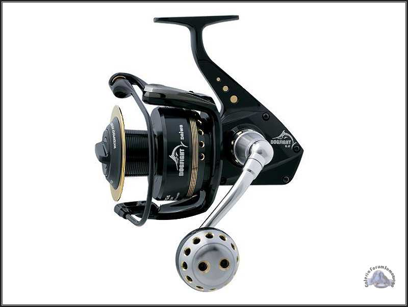 Daiwa Saltiga Dog Fight